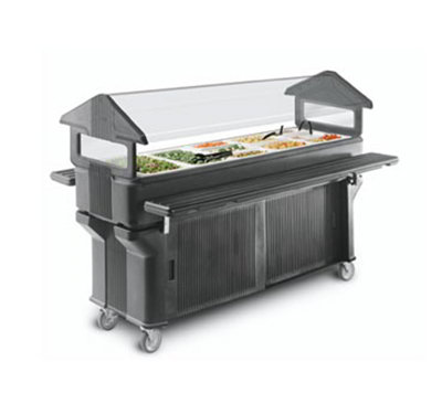 Carlisle 660601 Portable Food Bar - (5)Full-Size Pan Capacity, Polyethylene, Brown