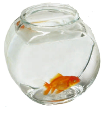 Anchor 70/2LPE .5-gal Fish Bowl, Crystal