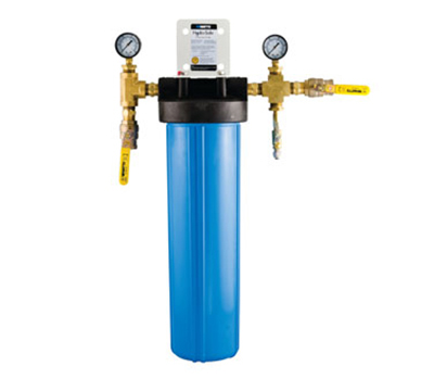 Dormont CBMX-CP1-B 1-Stage Cube Max-CP1BBL Filtration System w/ Ball Valves & Flush Kit
