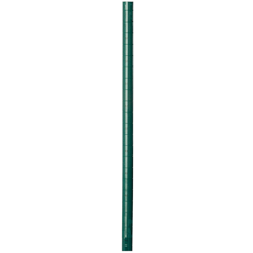 Focus FG063G Green Epoxy Coated Posts, 63 in H, Stationary