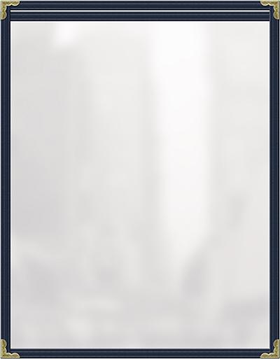 Risch TES5-1/2X8-1/2