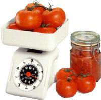 Platform Portion Control Food Scales