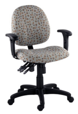 Ergocraft E-21724 Array Office Chair w/ Small Back & 4-Paddle