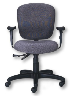 Ergocraft PS-5854-2481XL Cameron Task Chair w/